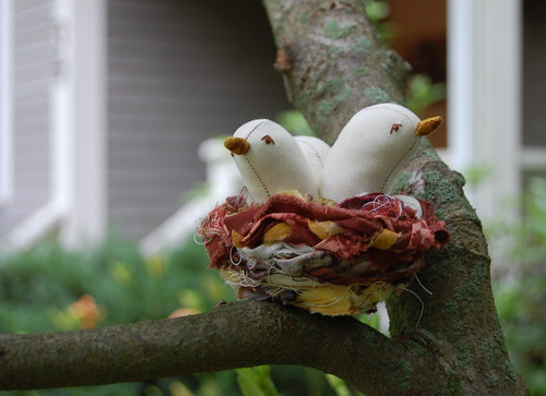 baby birds in a nest | by Abby Glassenberg