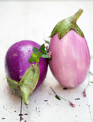 Purple eggplants from the organic school farm | by La tartine gourmande