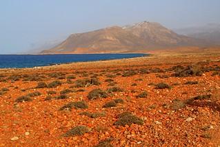 Socotra Island, Yemen Yemen