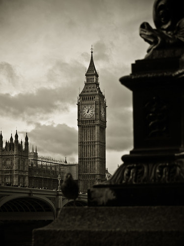 Big Ben and Black Bird | by FelipeI