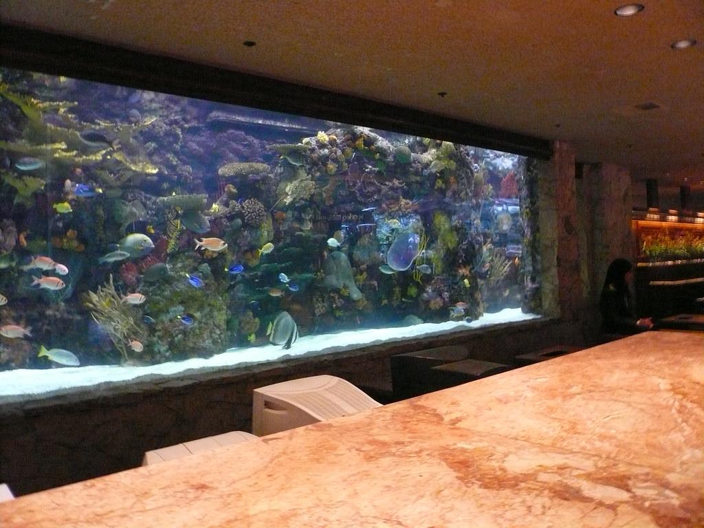 Lobby fish tank 2 of 3 mirage hotel las vegas july 2009 for Fish tank las vegas