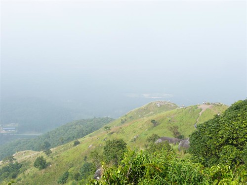 The Escapees Up Broga Hill #54 – The 3 Hills Of Broga Hill. | by ighosts