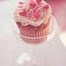 Cupcake Love.