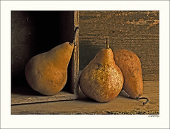 stillife study #3 | by c.matto