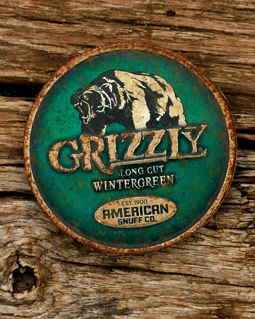 Grizzly Flickr Photo Sharing