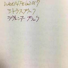 プラチナ萬年筆の古典インク