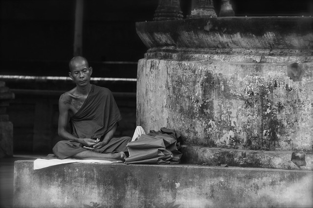 Contemplation In Bodhgaya