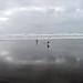 Manzanita Oregon November 27, 2009