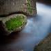 Moss and Blur