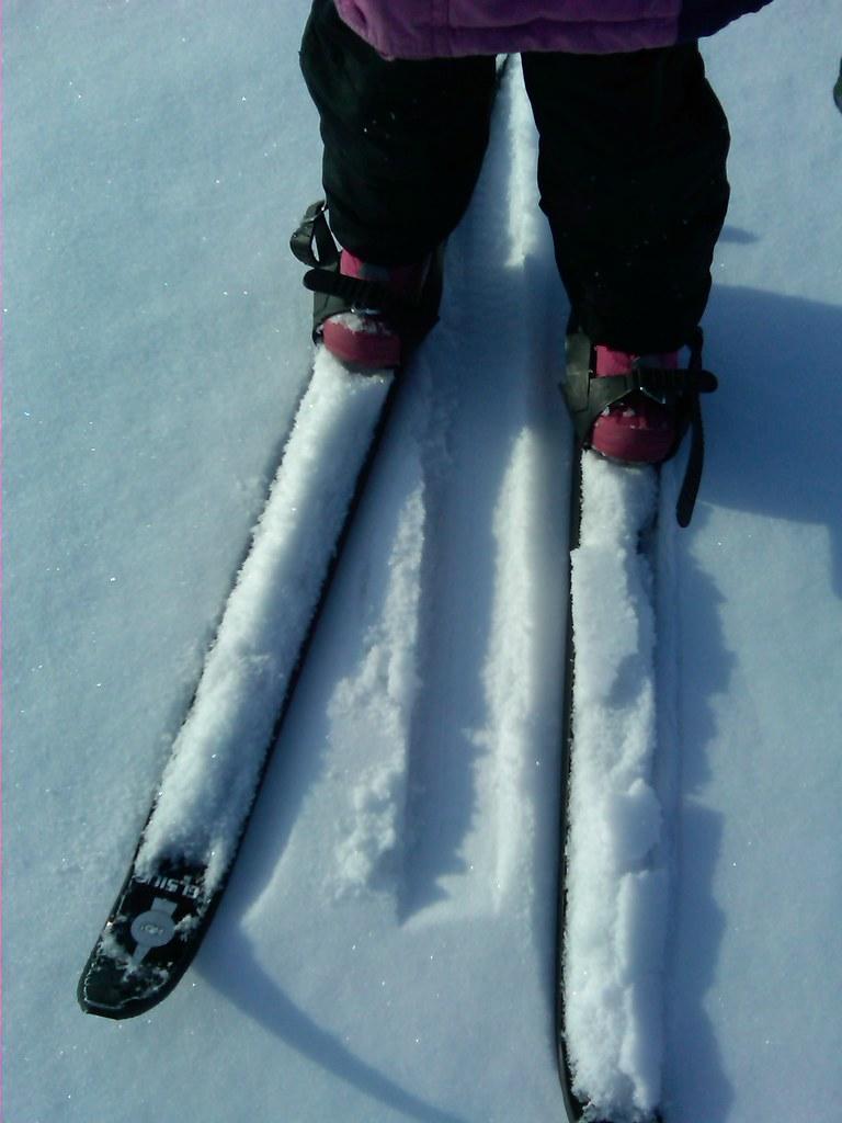 Plastic Skis For Yamaha Ovation