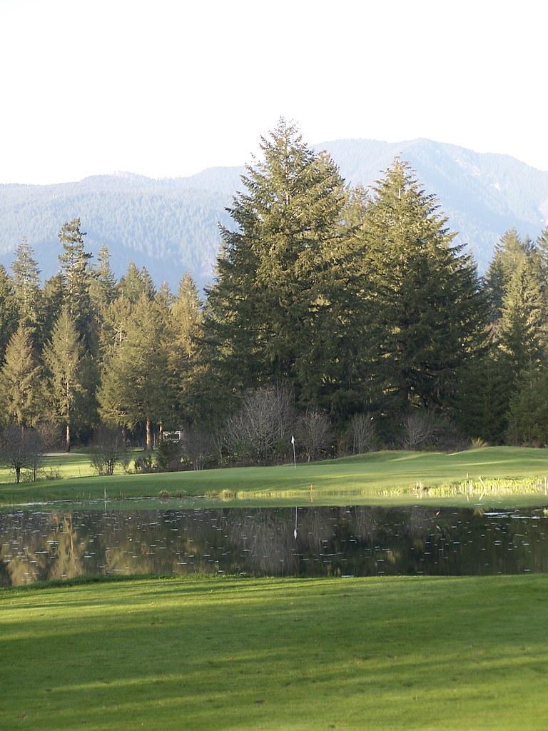 Best Golf Travel Bag Wheels