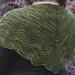 shawl on back