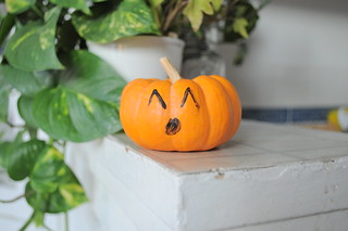 punkin | by ornithes