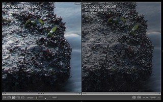 120.8 MP 5Dmk4 Dual Pixel RAW Real World Test | by Kinematic Digit