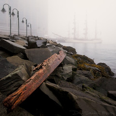 Tall Ship in the morning fog | by Dave the Haligonian