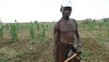 Angolan Small-scale Farmers | by IPS Africa