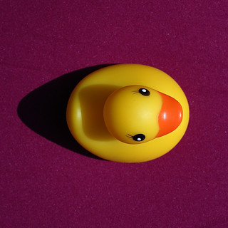 Brave New World : Google Earth 5.0 watches my little rubber duck | by Werner Schnell Images (2.stream)