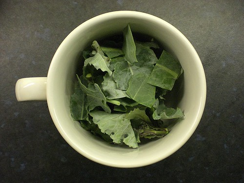 Home grown Broccoli leaves | by cox-on-the-box - art, clay, cats, veg