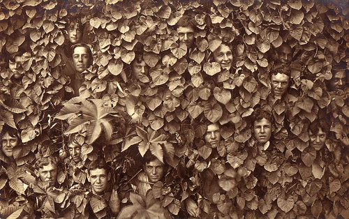 Seventeen men in the bushes (did I miss any?), circa 1910 | by boobob92