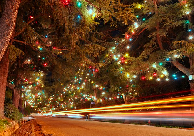 cars cruise past christmas tree lane by magnetic lobster