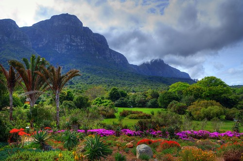 Kirstenbosch National Botanical Garden Cape Town Flickr