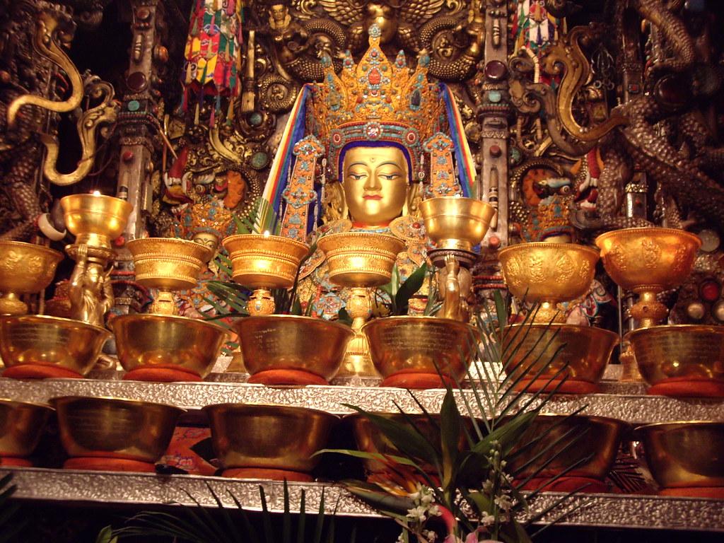 Is tibet free