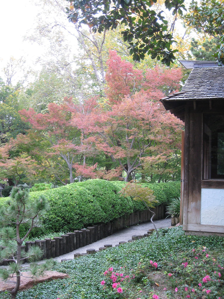 Japanese Gardens Fall Festival In Fort Worth, Texas