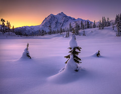 Mt Shukasan From Picture Lake In Winter | by kevin mcneal