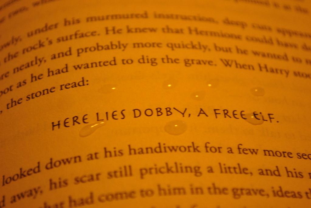 here lies dobby - photo #25