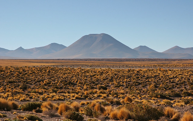 photo of an expansive dryland vista
