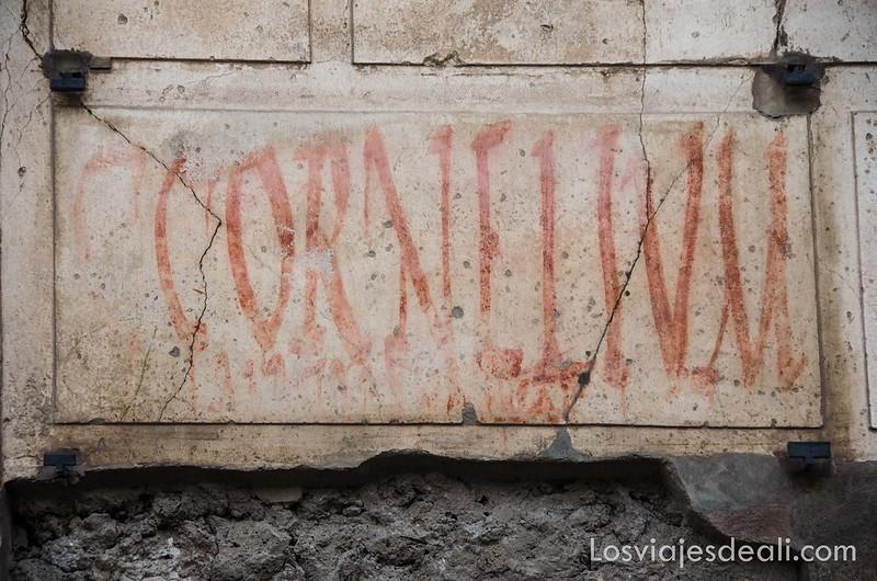 carteles electorales en la visita a Pompeya