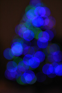 tree covered in blue lights | by jen ♫