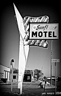 Stay At The Sunflower | by pam's pics-
