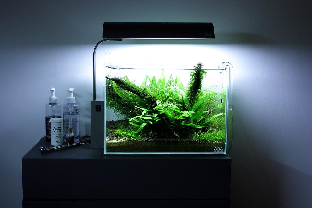Ada solar mini vs chihiros aquasky the planted tank forum for Aquarium cuve