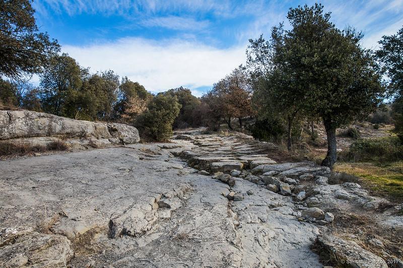 Camí Ral de Vic a Olot a la altura del Puigsespedres