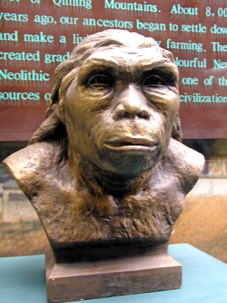 paleolithic and neolithic era essay Changes from the paleolithic to the neolithic age essay 608 words | 3 pages there were changes that occurred from the paleolithic period to the neolithic.