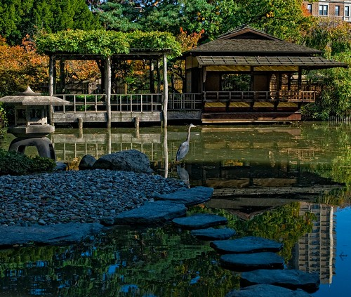 Japanese Hill-and-Pond Garden | by Brooklyn Botanic Garden