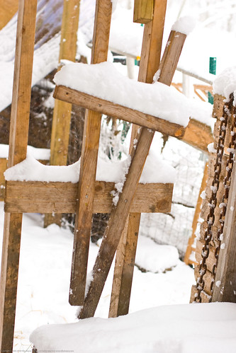 Humble Garden 2010: frozen stanchion | by nikaboyce