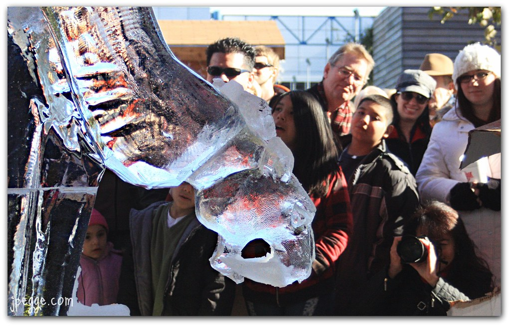 Frozen Saber Tooth Fangs | Ice carving comptetion at ...