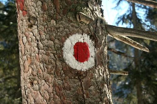 folge dem roten punkt