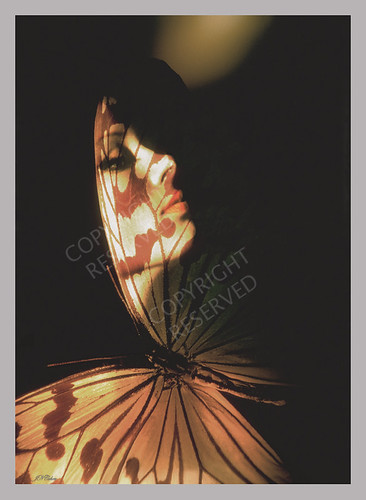 Madam Butterfly (01) | by John N Cohen