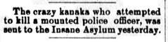Crazy Kanaka [Native Hawaiian]