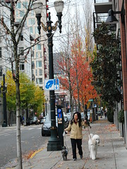 Pearl District, Portland, Oregon | by Mrs Piggy**