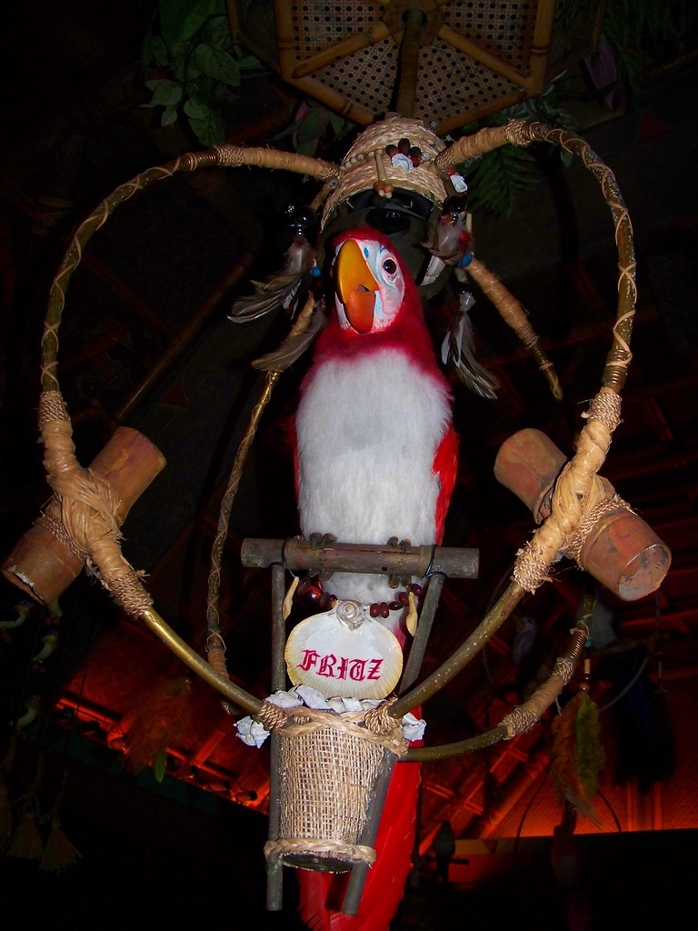 fritz in the enchanted tiki room loren javier flickr rh flickr com Disney Tiki Room Birds Tiki Room Pierre