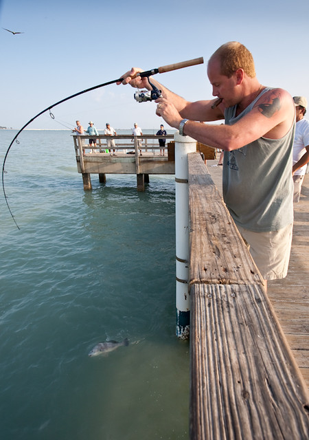 Fishing off of the sanibel pier 8950 flickr photo for Sanibel fishing pier