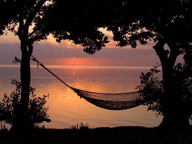 Image result for beach hammock