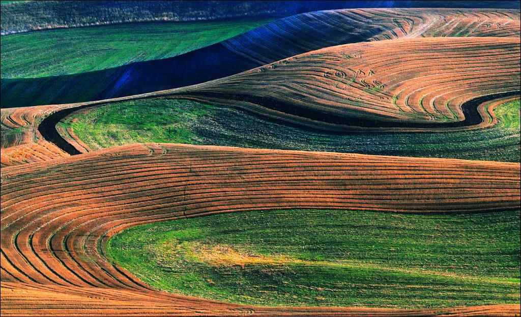 Palouse Washington Landscape Contours This One Is