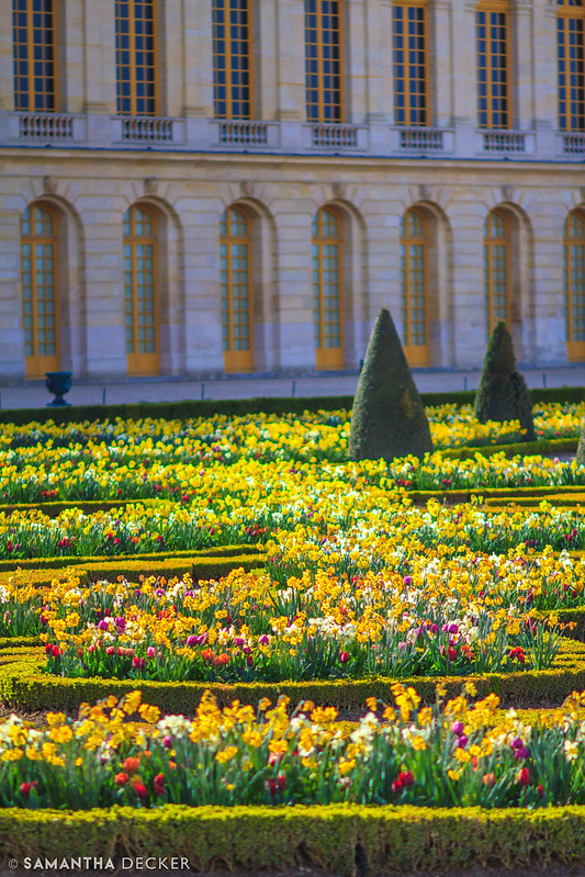Versailles in Bloom