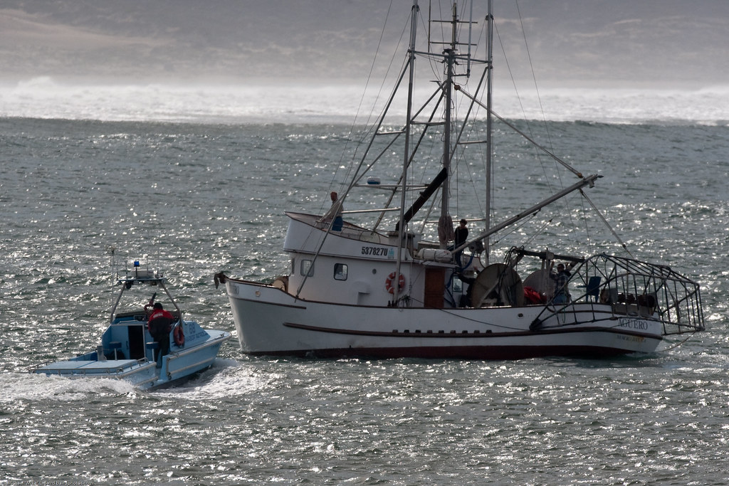 Morro bay harbor patrol warns fishing vessel aguero not to for Morro bay fishing