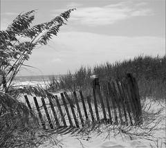 Dunes Myrtle Beach Sc
